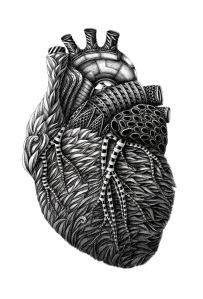 konahin heart