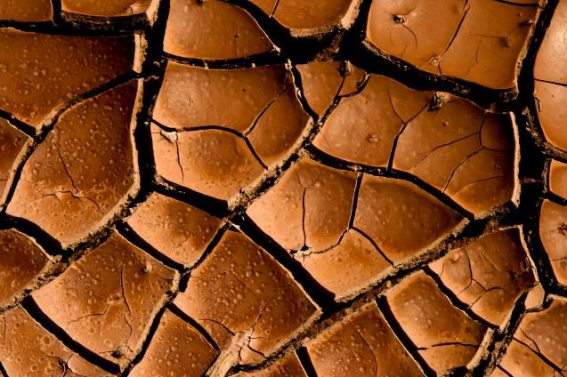 mud-cracks-2